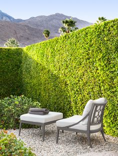 hedge and chair Relaxing Photos, Most Beautiful Gardens, House On The Rock, Outdoor Spaces, Outdoor Decor, Love Garden, Garden Pictures, Small Garden Design, Garden Spaces