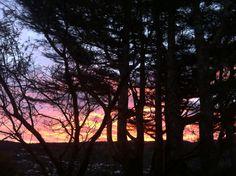 Sunsets  // 22.07.14