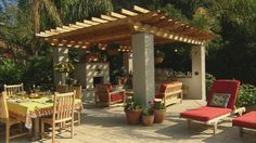 Mountainview Home - eclectic - patio - san francisco - Golden Gate Palms and Exotics