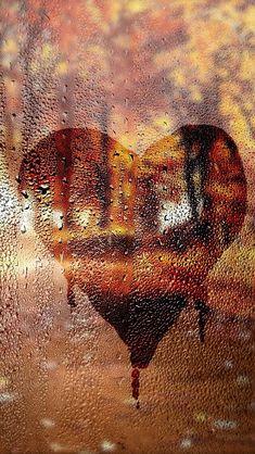 The love of Autumn & Rain