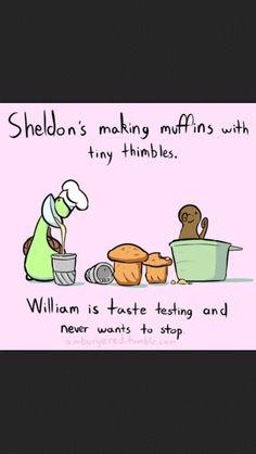 Sheldon the tiny dinosaur. If I were a tiny dinosaur this would be me Sheldon The Tiny Dinosaur, Funny Cute, The Funny, Hilarious, Funny Jokes, Cute Comics, Funny Comics, Turtle Dinosaur, Dinosaur Pics