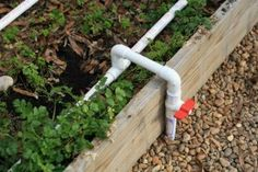 DIY drip irrigation