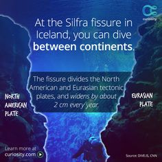 Swim through the Silfra fissure and look down at the canyon between continents.