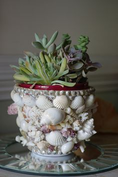 seashell, coral and barnacle flower pot, I can do this, I have the shells, and what a great way to see them everyday