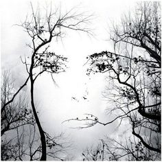 Funny pictures about Mother Nature. Oh, and cool pics about Mother Nature. Also, Mother Nature photos. Illusion Kunst, Art Visage, Tree Faces, Wow Art, In The Tree, Face Art, Belle Photo, Mother Nature, Amazing Art