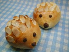 hedgehog bun