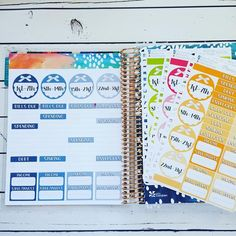Money Tracker planner stickers for the notes pages in your Erin Condren Life Planner.