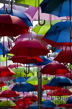 A colorful roof of dozens of umbrellas. Found at Borough Market in London.