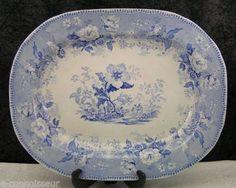 Antique Staffordshire Botanical Beauties Blue Transferware Platter