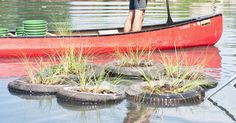 Use tires for a floating garden The turtles in our pond would love this!