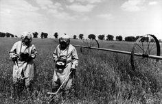 Strahlungsmessung in der Sperrzone um Tschernobyl (Mai 1986)