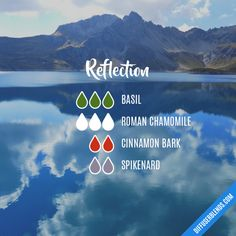Reflection - Essential Oil Diffuser Blend