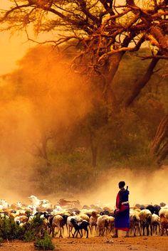 Kenya Travel Guide   Easy Planet Travel - World travel made simple