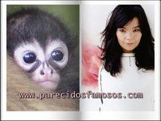 Parecidos con famosos: Bjork con macaco aranha