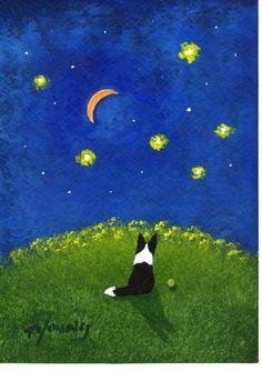 Border Collie Dog Outsider Folk Art PRINT Todd Young STAR GAZER