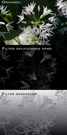 Filters - oplichtende rand en baserelief
