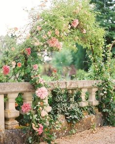 ~*~Lovely rose arch~*~