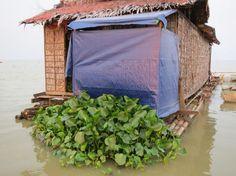 Arquitetura Sustentavel: Banheiro flutuante ganha sistema natural de tratam...
