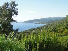 Magnifique propriété avec de très belles prestations et vue mer panoramique en Corse du Sud - FR 20145 SOLENZARA