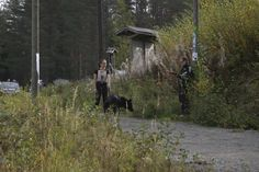 #Canicross #Kajaani Sep 2014