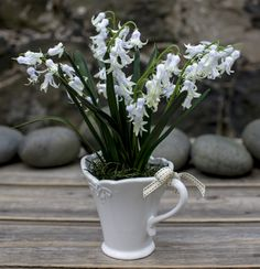 Lily of the Valley - via Paper White's