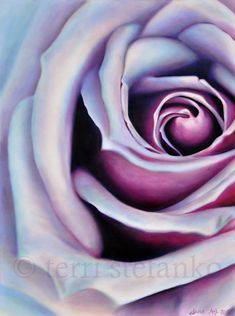"this large oil painting of a purple rose is approximately 36""x48"" and was inspired by my macro photography. this painting will give you a reminder of the beautiful world around you even if you are working in an office or entertaining visitors in your home on a gloomy day.  i use multiple layers of transparent color (glazes) in my work, which allows subtle colors to shine through and has a glowing effect! :) by terristefankofineart, $625"