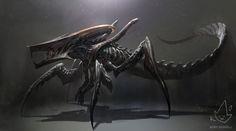 Xenomorph + Starship Trooperes Warrior Bug by Koryface