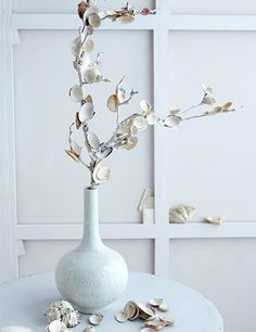 Decorating with Branches. Glue shells to white painted branches!  http://www.completely-coastal.com/2015/07/decorating-with-branches-coral-shell-coastal.html