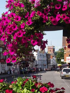 Blooming Guildford by Colin Smith, via Geograph