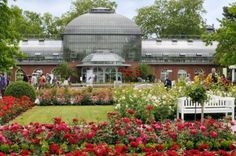 The Palmengarten in Frankfurt, Germany. Joyce, Missy & I spent many hours here. Parks, Palm Garden, Frankfurt Germany, Germany Castles, Cold Frame, Botanical Gardens, Beautiful Gardens, Indoor Plants, Places Ive Been