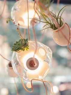 bocci38 - planten en verlichting - toegepaste kunst