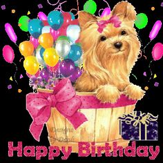 ᐅ Top 90 Happy Birthday images, greetings and pictures for WhatsApp Happy Birthday Dog, Happy Birthday Flower, Diy Birthday Banner, Happy Birthday Pictures, Happy Birthday Messages, Belated Birthday, Happy Birthday Greetings, Birthday Fun, Birthday Quotes