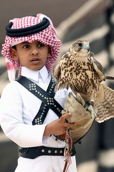 Boy of Qatar which drives a hawk hunting.