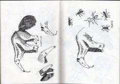 Les chroniques de la Pampa - Amelie Fontaine