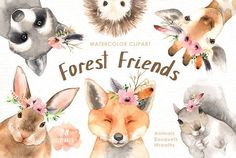 Forest Friends Watercolor Clip Art by everysunsun on @creativemarket