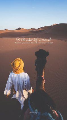 La prière surérogatoire en Islam - Al Fiqh Islamic Inspirational Quotes, Islamic Love Quotes, Muslim Quotes, Hadith Quotes, Arabic Quotes, Quotes Quotes, Quran Wallpaper, Islamic Quotes Wallpaper, Iphone Wallpaper