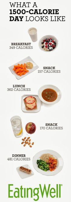 What 1500 Calories looks like.