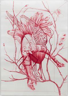 Rodolpho Parigi: Magenta Drawings (2010/2011)