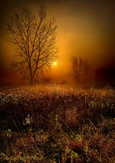The Fog (Wisconsin) by Phil~Koch on Flickr