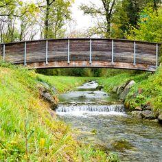 """""""Discipline is the bridge between goals and accomplishments."""" John Rohn  Disziplin ist mir nicht in die Wiege gelegt. Mir fällt es nicht so leicht Dinge regelmäßig mit Disziplin zu tun.  Wie geht es Dir mit Disziplin?  #communication #communicationtraining #seiduselbst #tuewasduliebst #traumjob #lovemylife  #BeMeAcademy #dowhatyoulove #glücklich #success #happy #happiness #smile #glücklichimjob  #beyourself #achtsamkeit #mindfulness #happylife #discipline #goals #accomplishment #johnrohn The Bridge, Garden Bridge, Leadership, Communication, Success, Outdoor Structures, Dream Job, Mindfulness, Do Your Thing"""