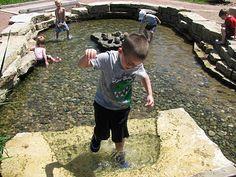 a pond! awesome