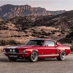 Pin By David On Stanger Mustang Cars Ford Classic Cars Muscle Cars Mustang Cobra, Mustang Fastback, Ford Mustang Shelby, Lamborghini, Ferrari, Maserati, Classic Mustang, Ford Classic Cars, Muscle Cars Vintage