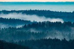 13. Dezember 2015. Nebelschwaden über der niederbayerischen Landschaft nahe Lalling im Landkreis Deggendorf.