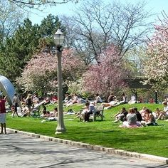 "Did you know BU has a beach? Google describes BU beach as ""A sloping grassy plaza on the university grounds featuring trees a sculpture & paved pathways."" That description doesn't do it justice. It's much cooler. Best part: It's only four blocks from Kilachand Hall! #bubeach #bukhc #bu2020 #proudtobu by bukhc"