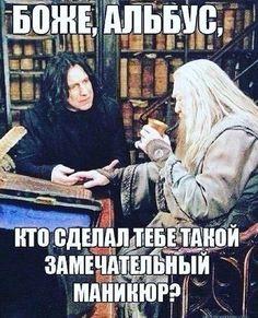 Harry Potter Mems, Harry Potter Fandom, Harry Potter World, Pranks To Pull, Gellert Grindelwald, Harry Potter Universal, Sarcastic Humor, Mom Humor, Hogwarts