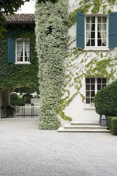 Charming. Love the ivy and the jasmine with the blue shutters. www.withlovefromkat.com