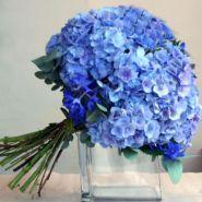 gorgeous hydrangea bouquet