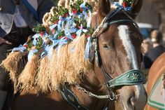 Georgiritt - easter horse parade in Traunstein