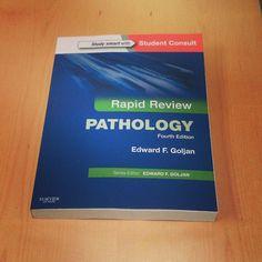 Rapid Review Pathology 4th Pdf