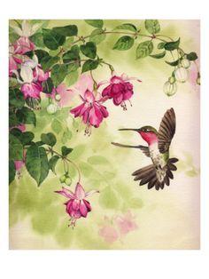 My mom loves hummingbirds & fuschia plants #PPBmothersday